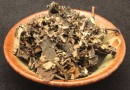 Liście maliny fermentowane