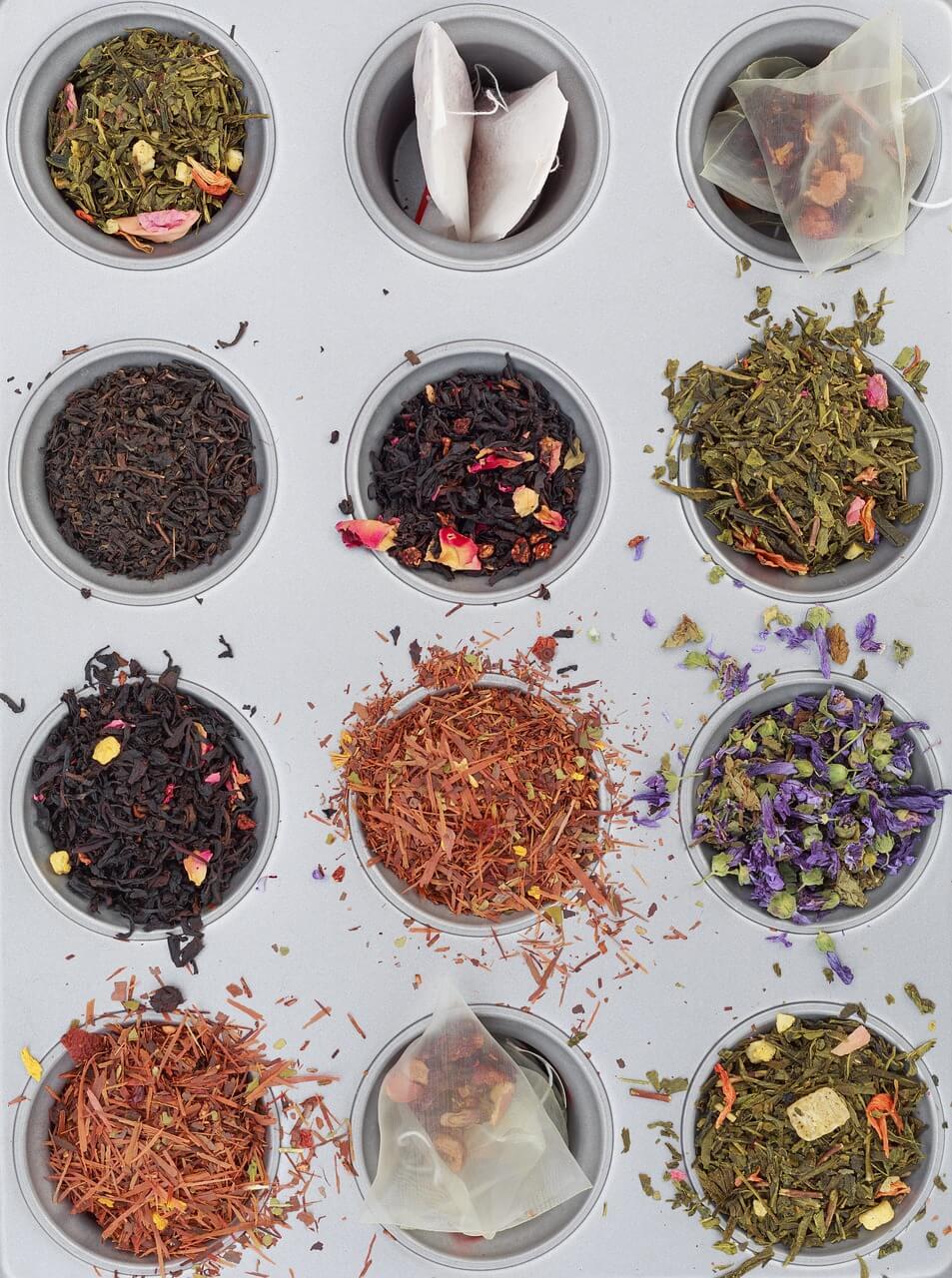 gatunki herbtaty